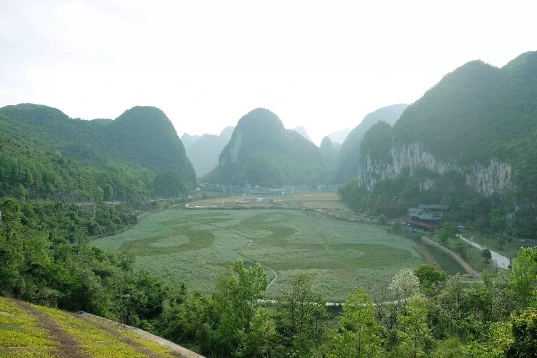 安顺市龙宫河道景观绿化工程